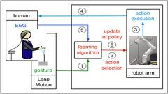 Intrinsic interactive reinforcement learning: Using error-related potentials